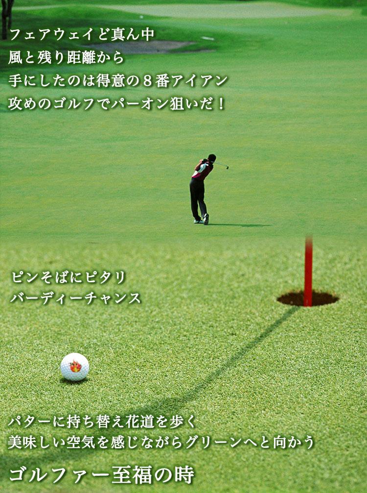 名入れゴルフボール 9個&ステンレスグリーンフォーク&ステンレスゴルフマーカー